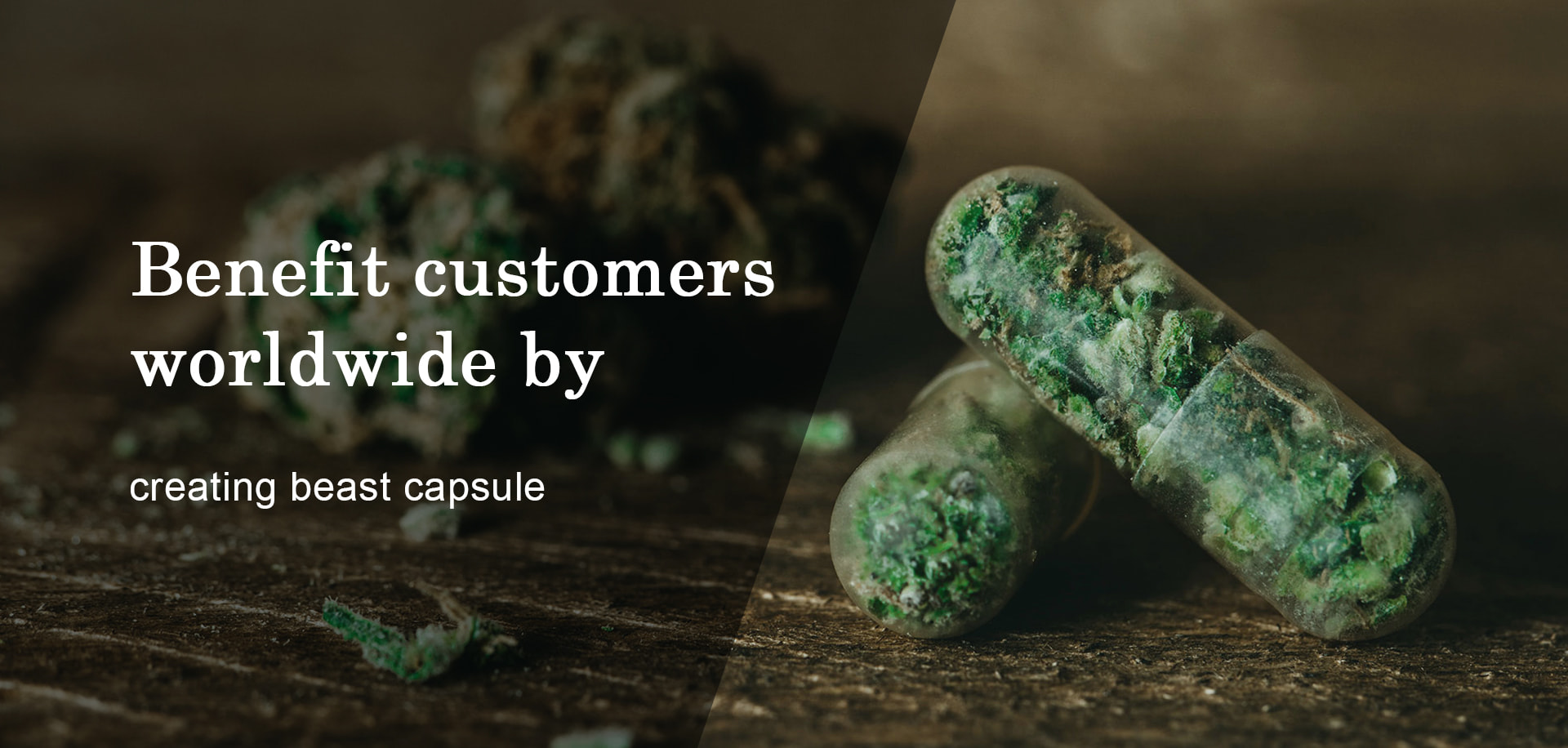 What's the introduction about hollow capsules?